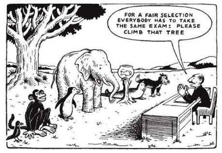 differentiation-picture